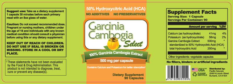 dosis diaria recomendada de garcinia cambogia
